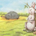 hare_tortoise - management lesson
